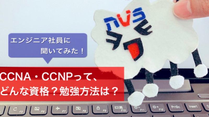 【NWエンジニアの登竜門】CCNA・CCNPってどんな資格?仕事で役立つの?にエンジニアが回答!