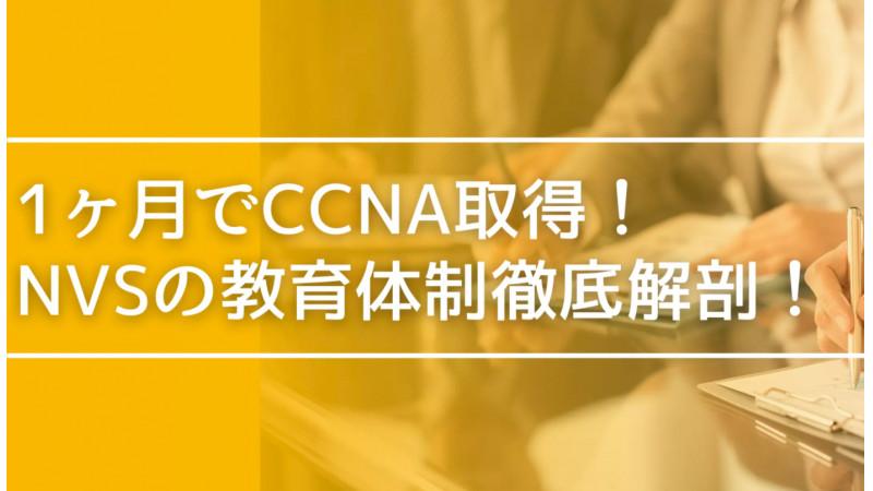 【NVSの教育体制徹底解剖】入社1ヶ月でCCNA取得!分からないを次の日に残さない文化と充実した研修の全貌とは?